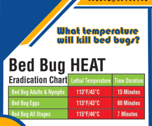 What temperature will kill bed bugs?