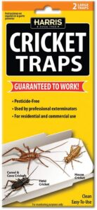Harris Bed Bug Traps